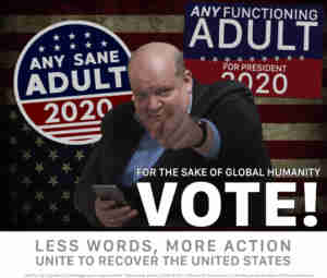 2020 USA vote