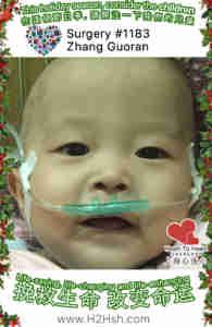 H2H Child 1183 Zhang Guoranweb