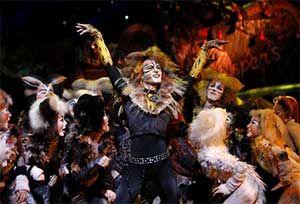 cats china 2012 rehearsal