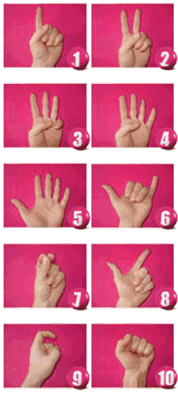 guide counting