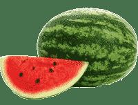 guide watermelon